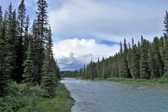 The Bow River (Patricia Henschen) Tags: lakelouise depot train station canadianpacific railroad alberta canada mountains clouds canadian rockies rocky banffnationalpark parks parcs parkscanada railroadstation railway boreal forest cp rail bow river