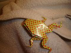 Rã Origami