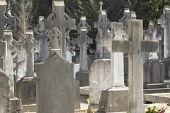 GLASNEVIN CEMETERY - DUBLIN, IRELAND - by infomatique