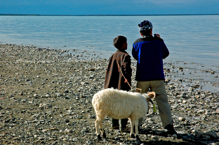 大叔、小孩與羊