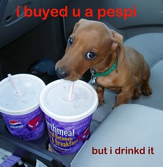 buyed you a pepsi