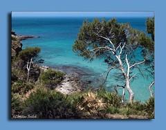 Mallorca Coves 3 (Christian Frölich) Tags: blue sea españa verde green rock azul mar spain searchthebest calas mallorca roca coves majorca baleares balearic naturesfinest abigfave aplusphoto holidaysvacanzeurlaub superbmasterpiece beyondexcellence