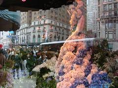 Macy's Window (Handler1) Tags: newyorkcity ny macys flowershow top20nyc