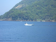 (mechiko) Tags: sea drive  izu   tago  070504