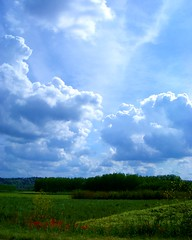 Nature (kurtolo81) Tags: sky cloud verde green de flickr blu 5 five may fabio poppy hours mayo 24 prato maggio papaveri asti cinquo grasso blueribbonwinner pregno supershot 35faves anawesomeshot colorphotoaward 24hoursofflickr piemonteitaly fabiopregno