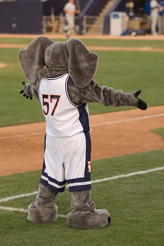 Tuffy, the Titans' mascot