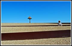Man versus nature... (Julian E...) Tags: abstract man bird lamp garden alone path negativespace getty isolation manvsnature confrontation absurdity blueribbonwinner supershot abigfave artlibre anawesomeshot diamondclassphotographer flickrdiamond
