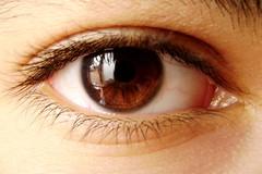 Eye (Waseef Akhtar) Tags: brown sunlight macro eye me myself lens photography daylight shiny skin cloudy sony shades jesters akhtar waseef sonydscs650