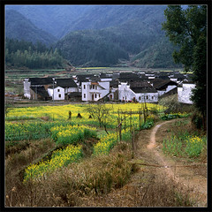 46-511   Jiangxi Wuyuan (boochap) Tags: china hometown hasselblad   jiangxi