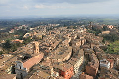 View from the bell tower in Sienna