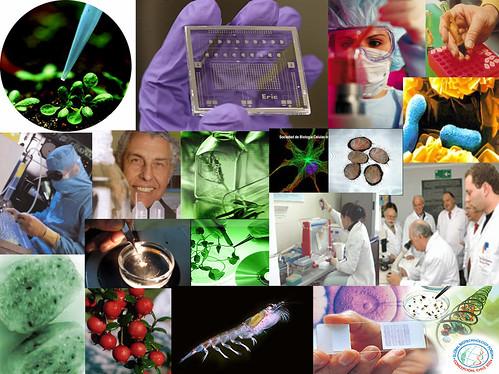Biotecnología en Chile - ricardoroman.cl