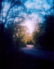 Road (dy no.cigarette) Tags: wisconsin holga blueday homeiswhereyouhangyourself holgacfn120 color120 ughidontknowhowtousemyscanner