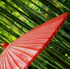 solstice in may (ajpscs) Tags: red hot green japan japanese one day kamakura bamboo parasol  nippon   ancientcity kanagawaken gtaggroup goddaym1 ajpscs nikonstunninggallery kanagawaprefecture