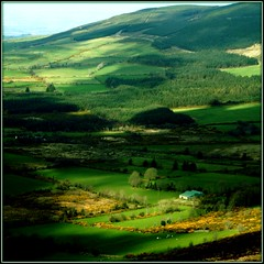 THE MOUNTAIN (Edward Dullard Photography. Kilkenny, Ireland.) Tags: kilkenny ireland irish mountain green landscape countryside heaven erin irland eire celtic myplace emeraldisle irlande ierland carlow leinster eireann blueribbonwinner irishcountryside beautifulireland findingireland superaplus aplusphoto discoverireland diamondclassphotographer flickerdiamond creativephotographers edwarddullard treasuresofireland kilkennycounty kilkennyscenery cillchannaig