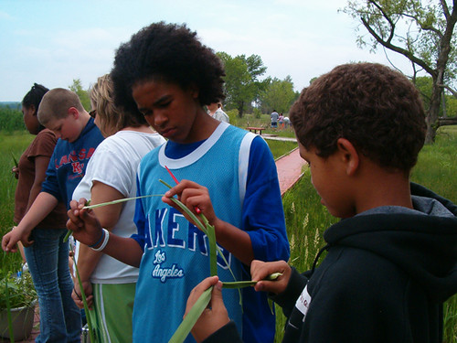 Botany at a Wetland Learner field trip.