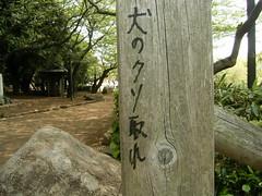 08 飛鳥山公園 02b.ソメイヨシノに犬のクソ