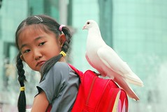 Am I carrying the peace? (Luo Shaoyang) Tags: china street girl children nikon peace action pigeon dove joy chinese beijing free nikond70s   joyful madeinchina paix streetshot  luo      actionphotos  beijinger   goldenphotographer asiachildren luoshaoyang