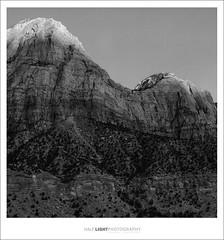 plate 660. (koaflashboy) Tags: mediumformat landscape utah nationalpark fineart duotone zionnationalpark ilfordfp4 mamiyarb67 hli portfolioprogettogether zonalprogammaplus