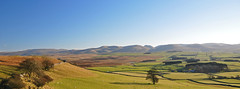 The Howgills from Great Asby Scar. (greengrocer48) Tags: greatasbyscar cumbria orton