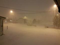 Outdoor today, snow blizzard (GeirB,) Tags: varanger vadsø vadsoe finnmark norway nordnorge noruega winter blizzard storm snow snø snjo sny windy december northernnorway arctic 70north hurricane barentsregionen