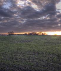 Haggard Farm Sunset