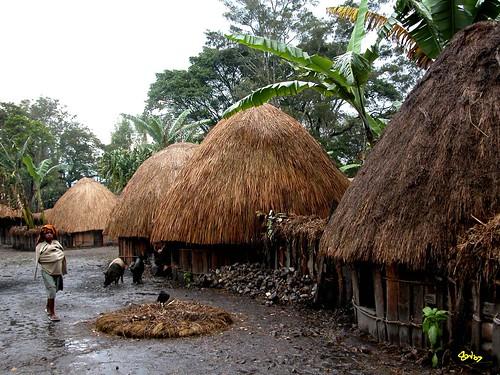 asmat village - papua