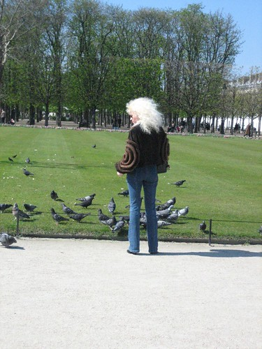 (1-4) I saw the pigeon fairy herself