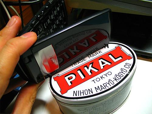 PIKAL2