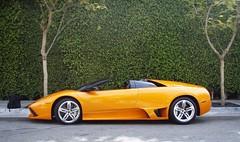 Lamborghini Murcielago LP640 Roadster (underwhelmer) Tags: 911 ferrari porsche lamborghini scr noble carrera gtb supercars murcielago mosler gt3 599 fiorano m400 lp640 mt900s
