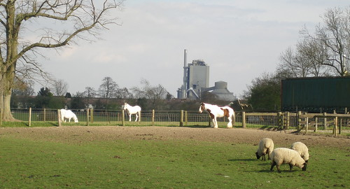 Shire horse and Cement Works, Long Lawford