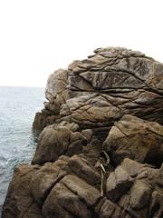 IMG_0206 (Maggie Paige) Tags: newzealand southisland abeltasmannationalpark coastaltrack