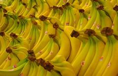 the banana brigade!