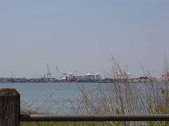 100_9686 (theplaz) Tags: travel cruiseship libertystatepark