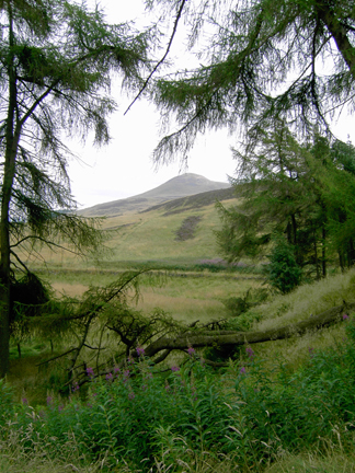 East Lomond Hill, Fife