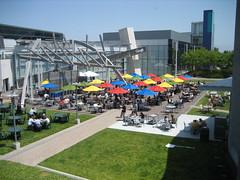 Googleplex Courtyard