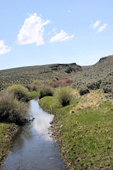 sheep creek (Doug Goodenough) Tags: owyhee canyon lands canyonlands desert sagebrush nevada idaho bicycle touring bike mountain mountains jarbidge bruneau douggoodenough drg531 07 2007 pedals spokes ride cycle drg53107