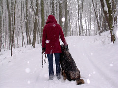 Red Ridding Hood (rscandel) Tags: winter snow redridinghood caperucitaroja rscandel
