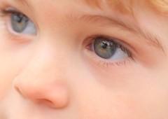 mirada de ojos grises (briveira) Tags: eye ojo son dani zul mirada hijo briveiracom