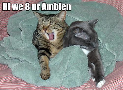 Hi we 8 ur Ambien.