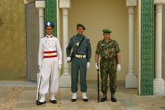 A Guarda Real de Mouhamed VI (israel.barros) Tags: marrocos fs