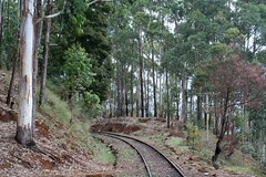 CNR_TO_OOTY-87