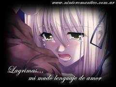 Mi mudo lenguaje de amor