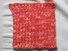 Candy Lips Dishcloth