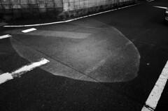 _R015102 (yukio sakaue) Tags: ricohgr gr bw blackandwhite border horizon shadow