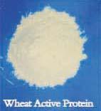 XZAY Wheat Gluten