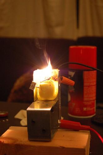 Electrocution of Peeps