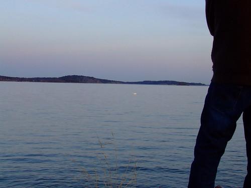 Fotografía de medio chicho de espaldas con el mar al fondo