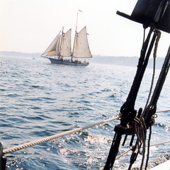 Maine (Peter Gutierrez) Tags: new england usa film me lines sailboat america cord coast us photo sailing cords camden united maine sails rope line atlantic peter american sail gutierrez americana states windjammer ropes rigging windjammers petergutierrez