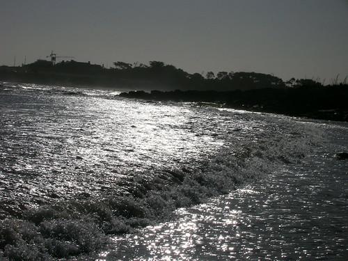 2007-01-22_013