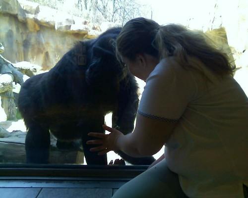Zoo 2007 04 07 06